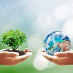 environmental-sustainability-500x500-1